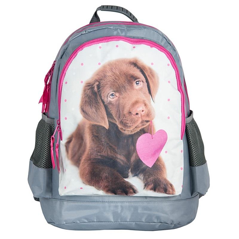 8fde6832be20c Plecak szkolny dla dziewczynki Paso pies z serduszkiem