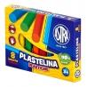 Szkolny zestaw plastyczny Astra